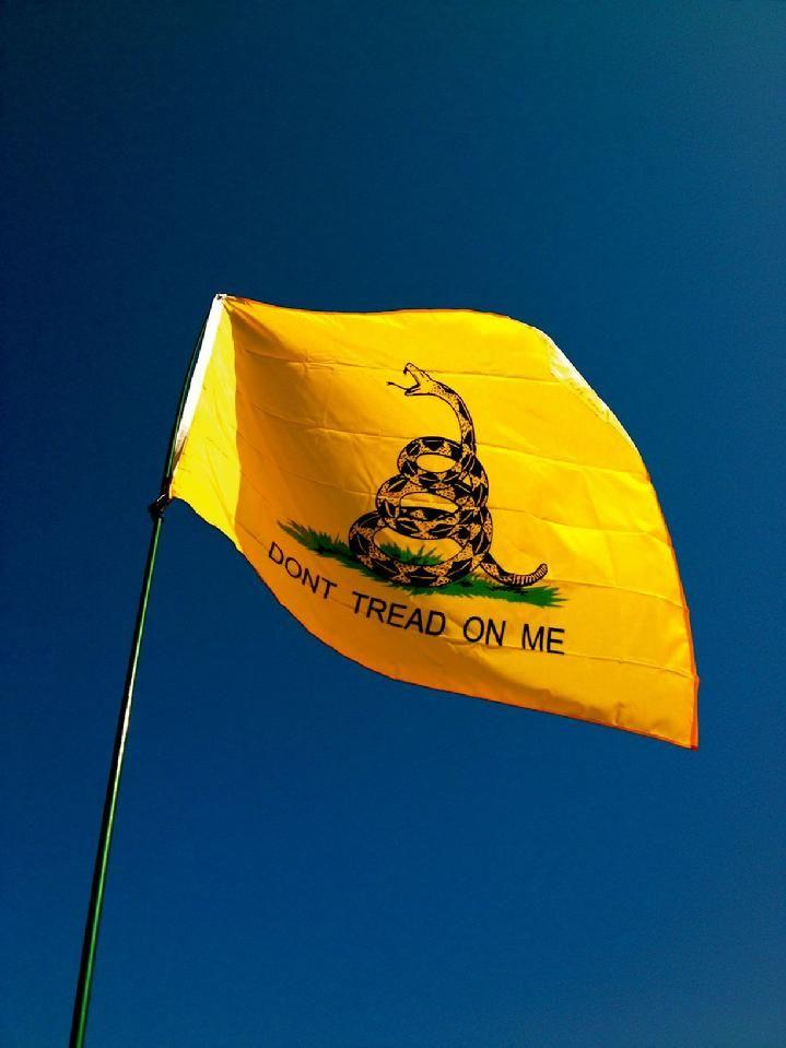 gadsden flag by bald eagle flag store, gadsden flag made in va by the oldest flag company in fredericksburg va, dont tread on me rattlesnake flag is a historical flag of the united states