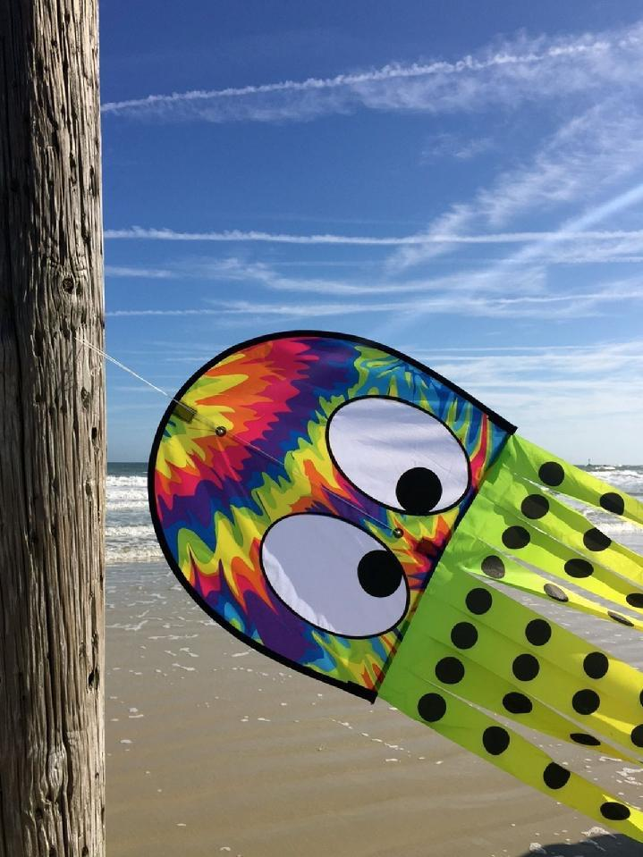 KITE, FLAGPOLE, FLAG AND FLAG PRODUCT BY BALD EAGLE FLAG STORE SERVING FREDERICKSBURG, RICHMOND, HAMPTON, NEWPORT NEWS, NORFOLK, VA BEACH, ARLINGTON, ALEXANDRIA, FAIRFAX, PRINCE WILLIAM, STAFFORD, HAYMARKET, WARRENTON, CULPEPPER, CHARLOTTESVILLE, MECHANICSVILLE, MIDLOTHIAN, PETERSBURG