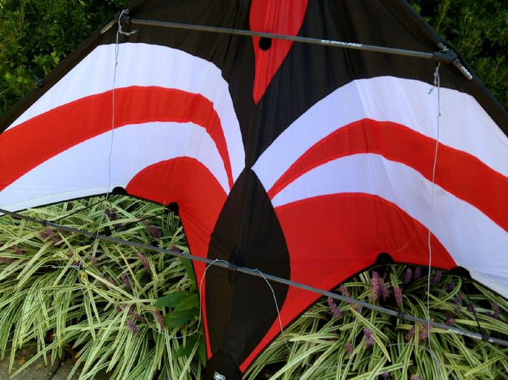 PREMIER KITES WIDOW NG SPORT KITE BY BALD EAGLE FLAG STORE FREDERICKSBURG VA, PHOTOGRAPH BY BALD EAGLE FLAG STORE FREDERICKSBURG VA (540) 374-3480