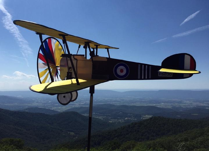 VINTAGE AEROBATIC BIPLANE FOR SALE BY BALD EAGLE FLAG STORE FREDERICKSBURG VA USA, 540-374-3480 PHOTOGRAPH BY BALDEAGLEINDUSTRIES.COM